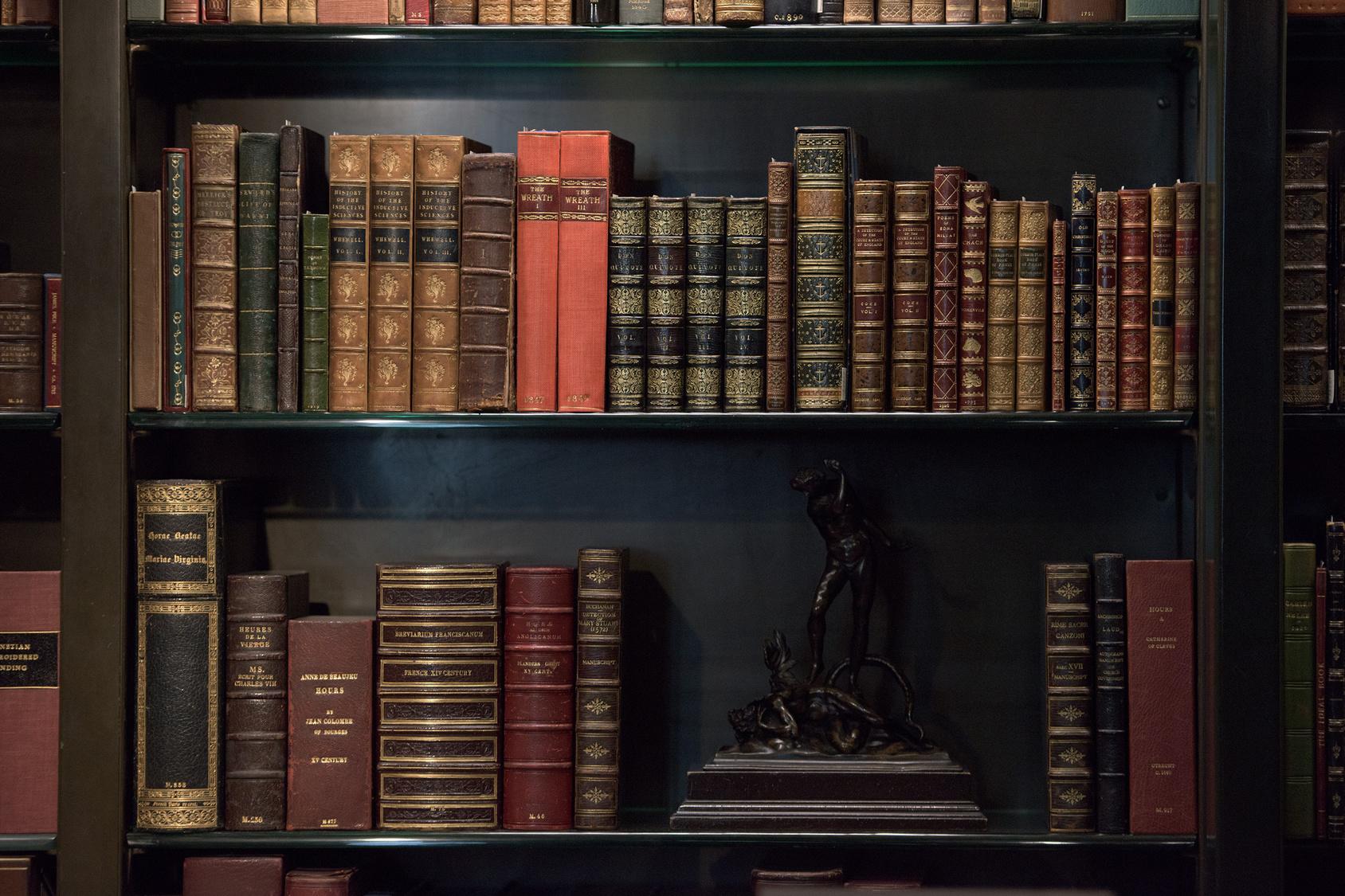 Картинки полки с книгами в библиотеке